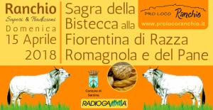Copertina Sagra Fiorentina 15 Apriler