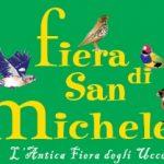 Fiera di San Michele a Santarcangelo