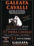 Galeata Cavalli fiera cavallo 2012