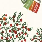 antichi frutti pennabilli 2013