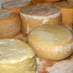sagra formaggio fossa sogliano 2014
