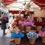 mercatino francese lugo 2013