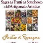 sagra frutti sottobosco portico 2012